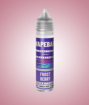 frost berry vapebar